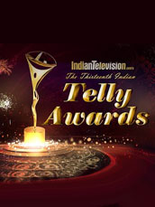 Indian Television Awards  2014