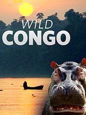Wild Congo (2017)