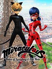 Miraculous Tales Of Ladybug & Cat Noir